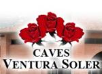 logo_cavesventurasoler